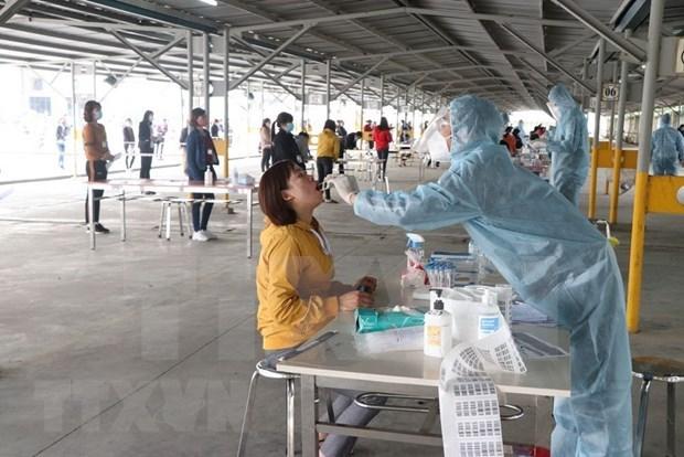 Vietnam reporta siete casos nuevos de COVID-19 hinh anh 1