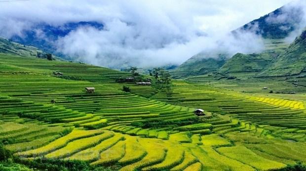 Algunas cuestiones teoricas y practicas sobre el socialismo y el camino al socialismo en Vietnam hinh anh 3