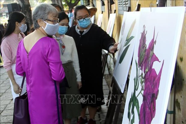 En provincia vietnamita exposicion sobre flores de Colombia hinh anh 2