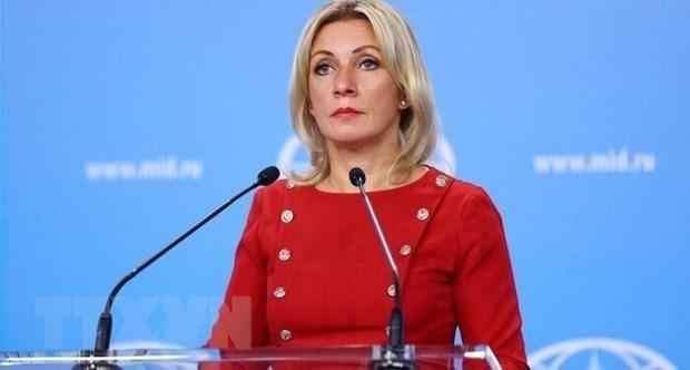 Aprecia Rusia asociacion estrategica con Vietnam en nuevo escenario hinh anh 1