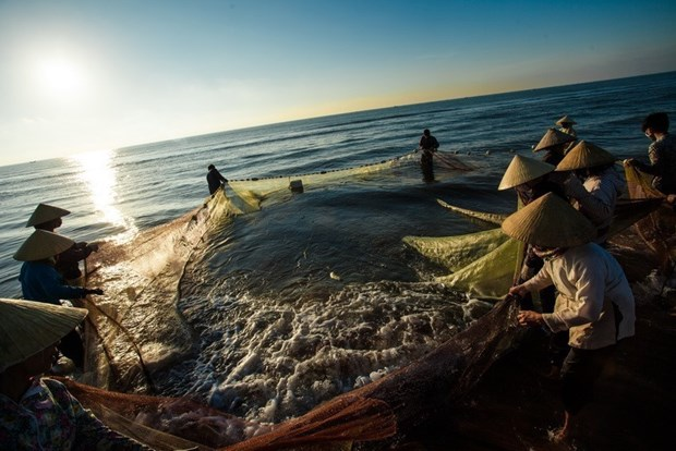 Vietnam aspira a construir sector pesquero integrado, sostenible y responsable hinh anh 1
