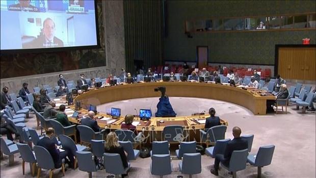 Ratifica Vietnam apoyo a equidad de genero en proceso de paz en Sahel hinh anh 1