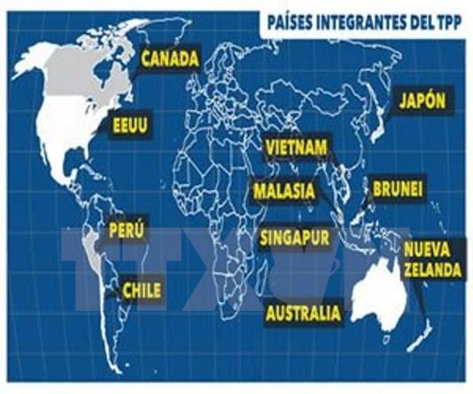 Miembros de TPP programan en Hawai cita ministerial hinh anh 1