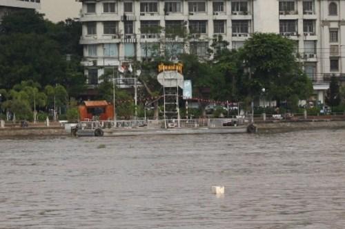 Proyectan construir en Ciudad Ho Chi Minh sistema de hidrobus hinh anh 1
