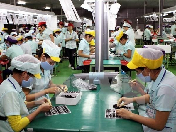 OIT: Asalariados vietnamitas son jovenes, dinamicos y moviles hinh anh 1