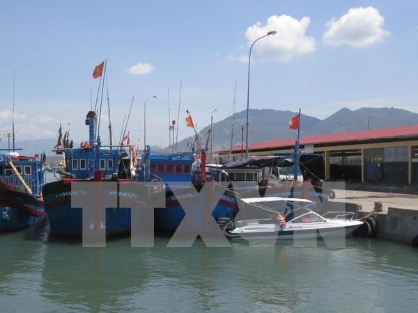 Autorizan construccion de centro para la pesca en Ba Ria- Vung Tau hinh anh 1