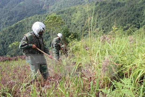 Acomete Ha Tinh desactivacion de bombas sin explotar hinh anh 1