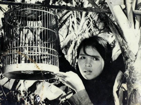 Inauguran Semana de Cine de Vietnam en Paraguay hinh anh 1