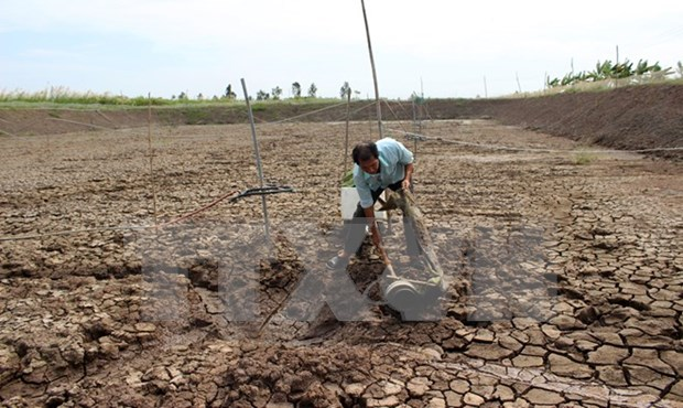 Vietnam y Japon juntan manos en adaptacion al cambio climatico hinh anh 1