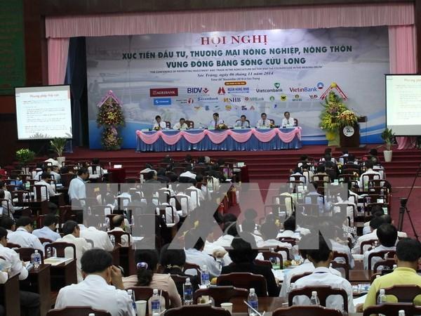 Organizaran foro de cooperacion economica en Hau Giang hinh anh 1