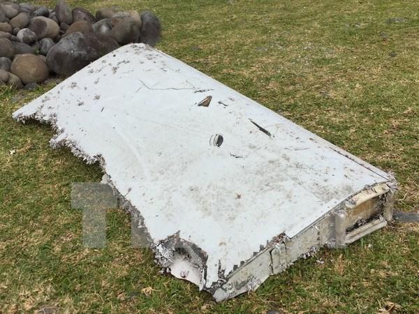 Otros restos de avion hallados en isla francesa La Reunion hinh anh 2