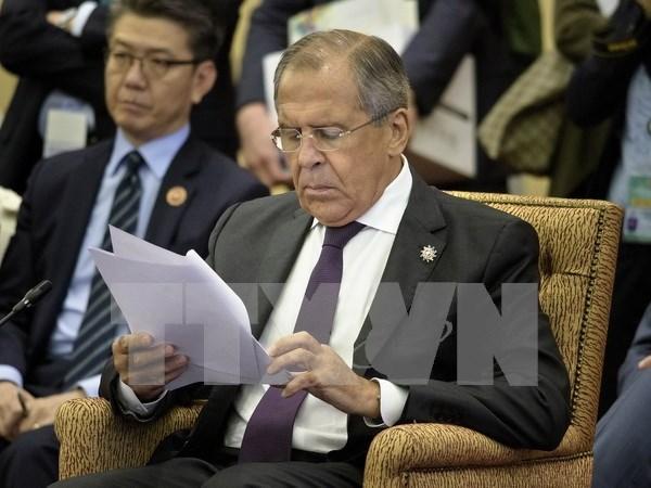 TLC entre Vietnam y UEE: trampolin para nexos Rusia- ASEAN hinh anh 1