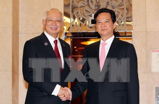 Elevan Vietnam y Malasia nivel de relaciones hinh anh 1