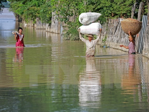 Sufre Myanmar graves inundaciones hinh anh 1
