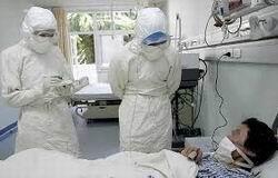 Organizaran en Hanoi reunion internacional de lucha contra epidemias hinh anh 1