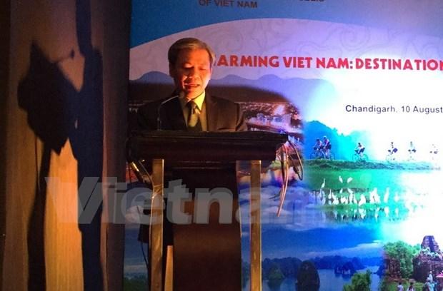 Promocion turistica vietnamita en la India hinh anh 1