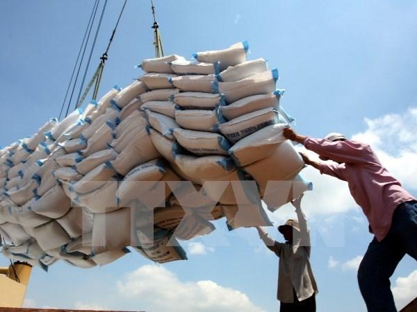 Vietnam exporta tres millones 300 mil toneladas de arroz hinh anh 1