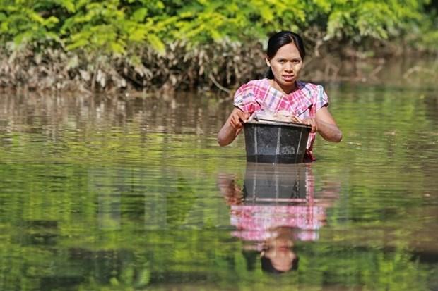 ASEAN brinda asistencia a victimas de inundaciones en Myanmar hinh anh 1