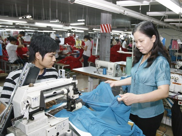 Empresas vietnamitas buscan oportunidades de negocios en Rusia hinh anh 1
