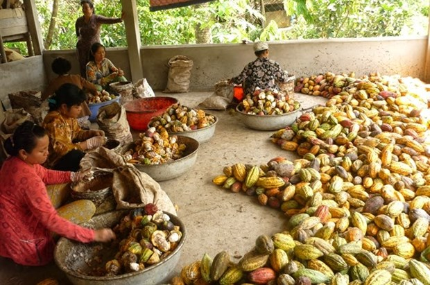 Indonesia y Singapur incrementan cooperacion agricola hinh anh 1