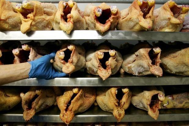 Avicultores enfrentan dificultades por importacion de pollos estadoun hinh anh 1