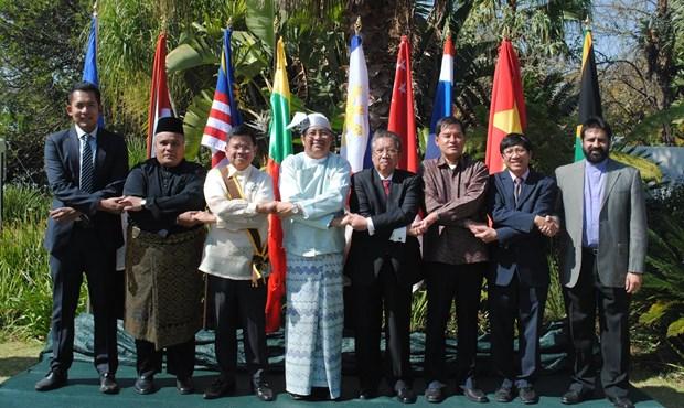 ASEAN celebra en Sudafrica aniversario de su fundacion hinh anh 1