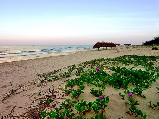 Nhat Le en topten de playas mas atractivas de Vietnam hinh anh 1
