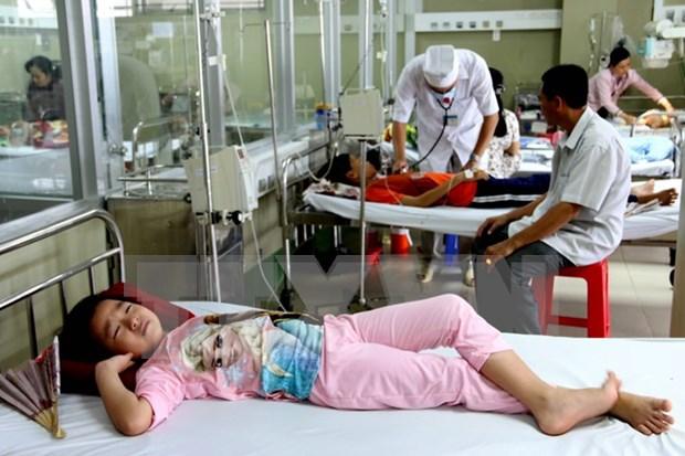 Recomienda Vietnam a ciudadanos tratamiento de dengue en hospitales hinh anh 1