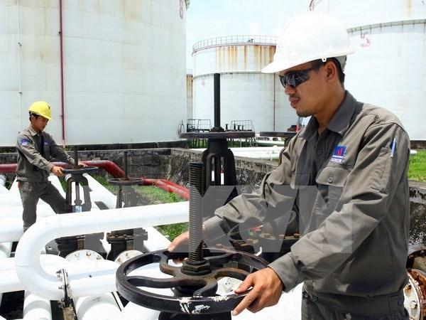 PetroVietnam comienza extraccion petrolera en Argelia hinh anh 1