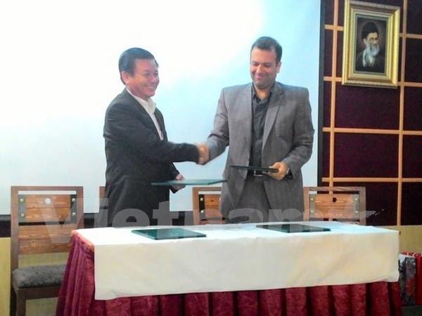 Vietnam e Iran robustecen cooperacion interprovincial hinh anh 1
