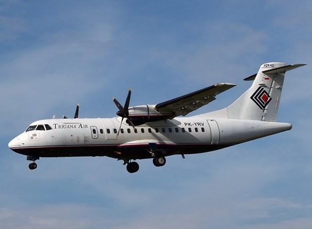 Avion indonesio se estrella contra montana en Papua hinh anh 1