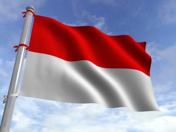 Dirigentes vietnamitas felicitan a Indonesia por Dia Nacional hinh anh 1