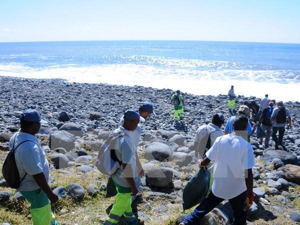 Terminan busqueda de fragmentos de MH370 en isla Reunion hinh anh 1
