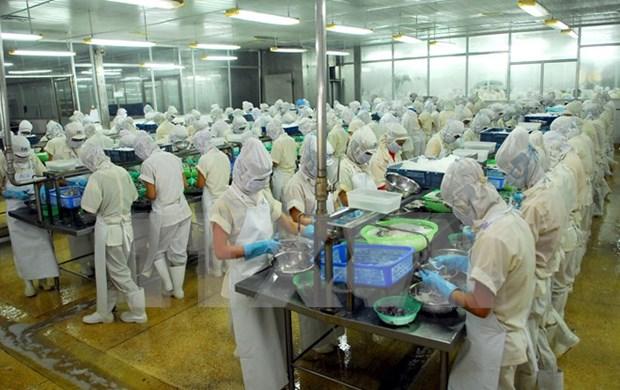 Empresas filipinas buscan oportunidades de cooperacion en Vietnam hinh anh 1