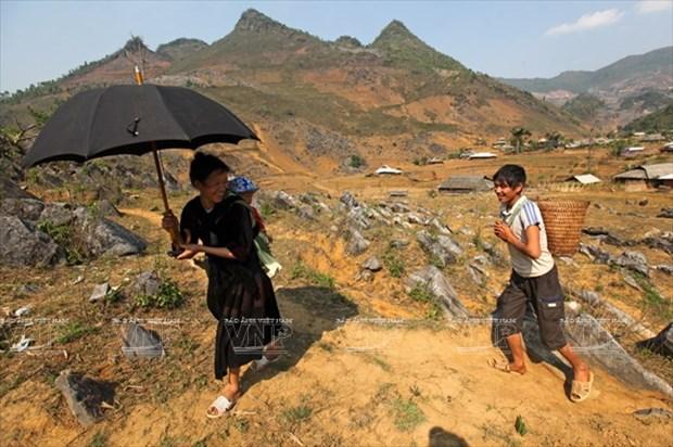 Meseta rocosa Tua Chua: belleza representativa de Dien Bien hinh anh 2