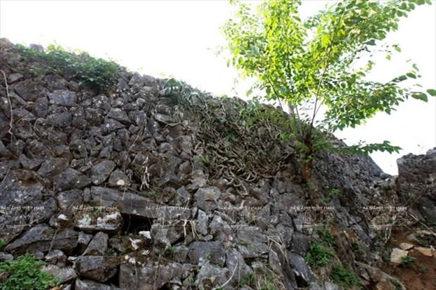 Meseta rocosa Tua Chua: belleza representativa de Dien Bien hinh anh 9