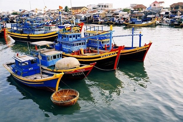 Aprobado plan de construccion de centros de industria pesquera hinh anh 1
