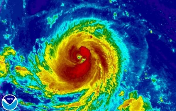 Filipinas: Al menos siete muertos por tifon Goni hinh anh 1
