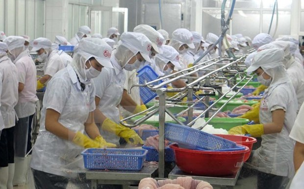 Vietnam busca promover exportacion de mariscos a China hinh anh 1