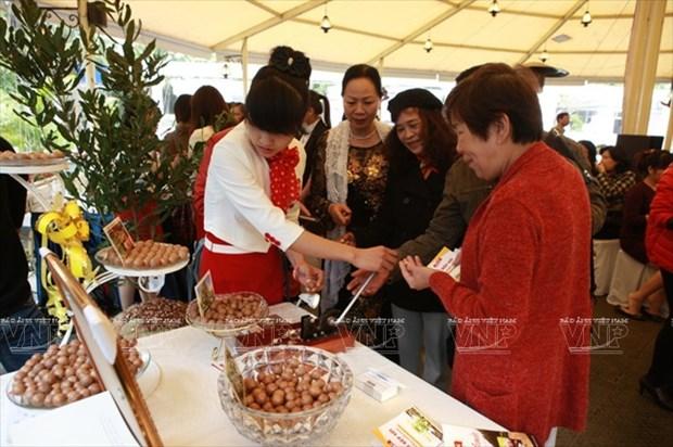Devino cultivo de Macadamia en sector potencial de Vietnam hinh anh 12