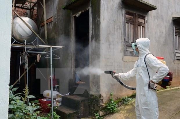 Incrementan casos de dengue en localidades vietnamitas hinh anh 1