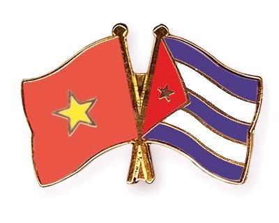 Amistad Vietnam-Cuba, felicidad para ambos pueblos, dijo embajador hinh anh 1