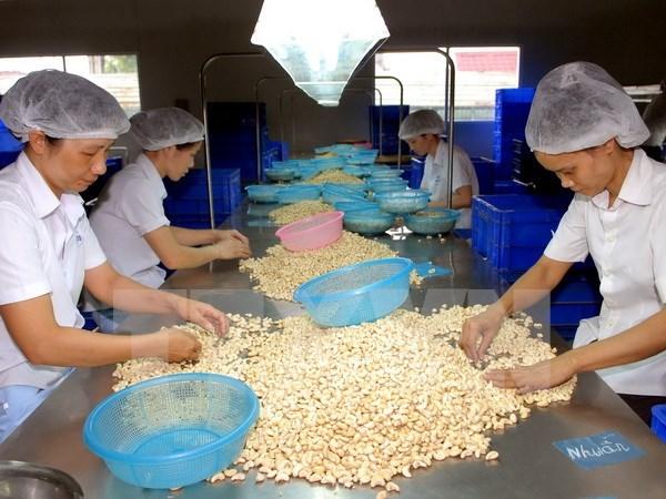 Dong Nai logra mayor ganancia por exportacion hinh anh 1