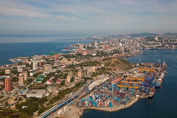 Vietnam participa en el Foro Economico Oriental en Rusia hinh anh 1