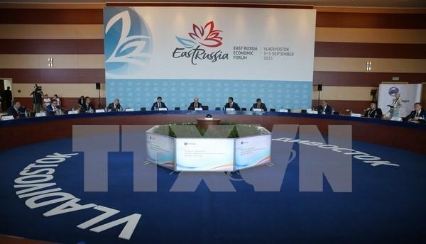 Vietnam participa en Foro de Economia Oriental 2015 de Rusia hinh anh 1