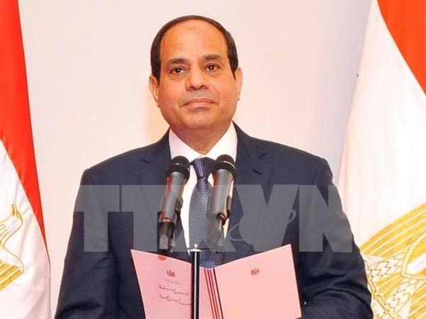 ASEAN y Egipto acuerdan intensificar cooperacion multifacetica hinh anh 1