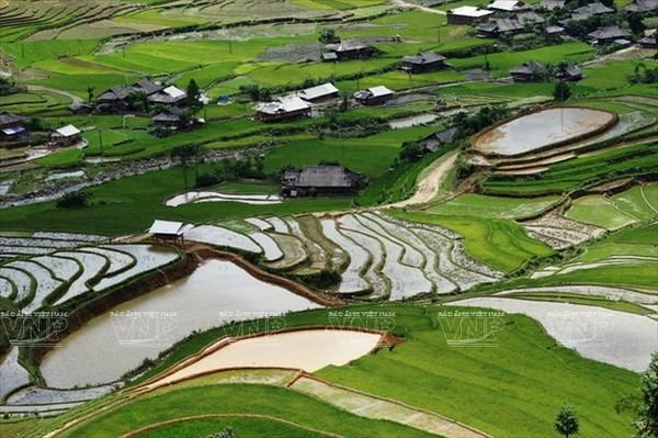 Semana cultura honra valores culturales de etnia Mong hinh anh 1