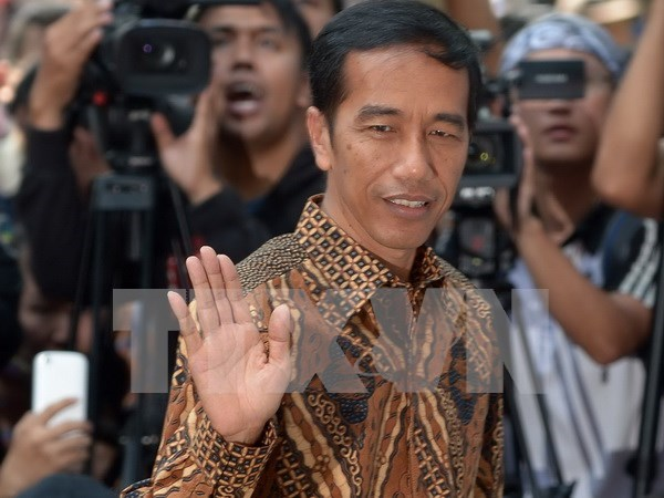 Indonesia busca fomentar cooperacion economica con Medio Oriente hinh anh 1