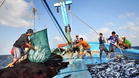 Ligero aumento de produccion pesquera de Vietnam hinh anh 1