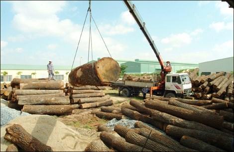 Aumentan exportaciones madereras vietnamitas a China hinh anh 1